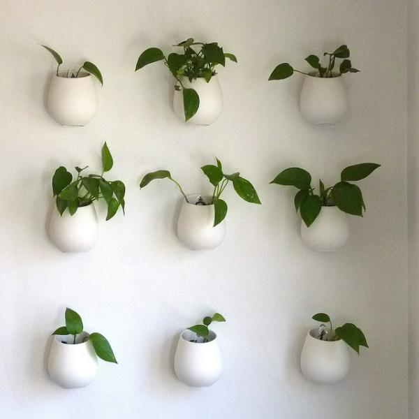 Indoor-wall-planters-are-easy-to-incorporate