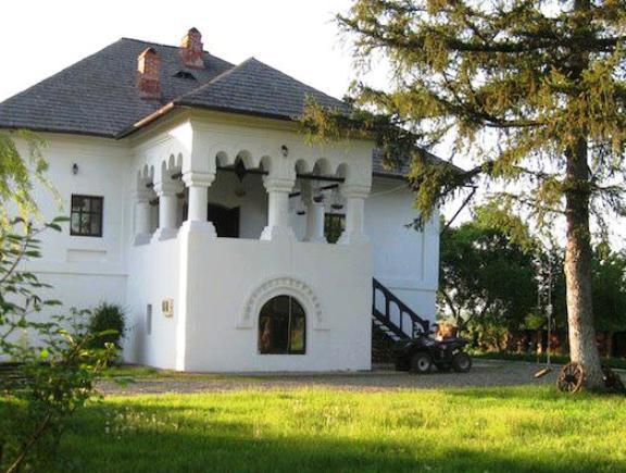 Proiecte de case traditionale romanesti casa i gr dina for Arhitectura case cu mansarda