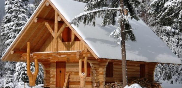 Proiecte de case din lemn rotund