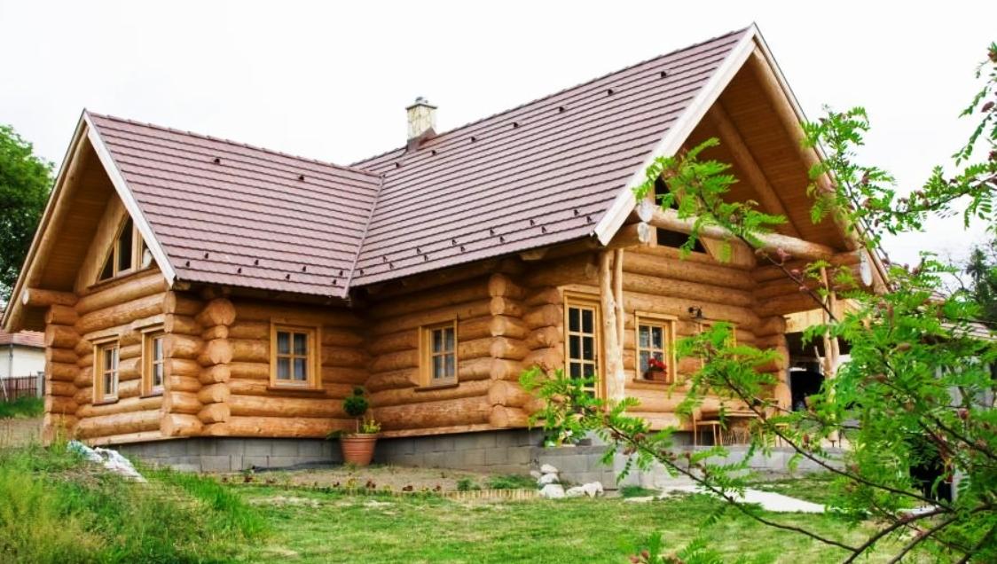 proiecte de case din lemn rotund casa i gr dina