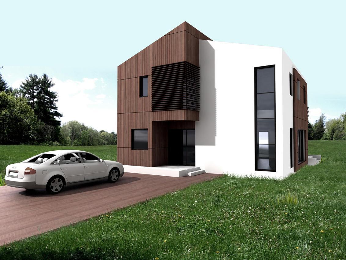 Proiecte de case mari cu etaj casa i gr dina for Case cu etaj
