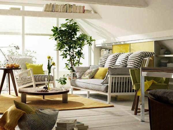 Pozitia corecta a plantelor din casa (1)