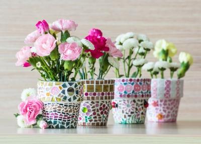 Trandafirii pitici (1)