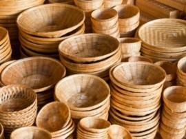 bambusul (5)