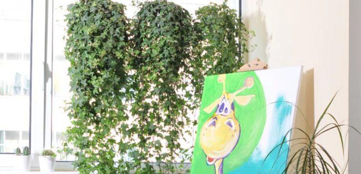 perdeaua din plante