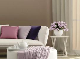 culoarea definește stilul casei