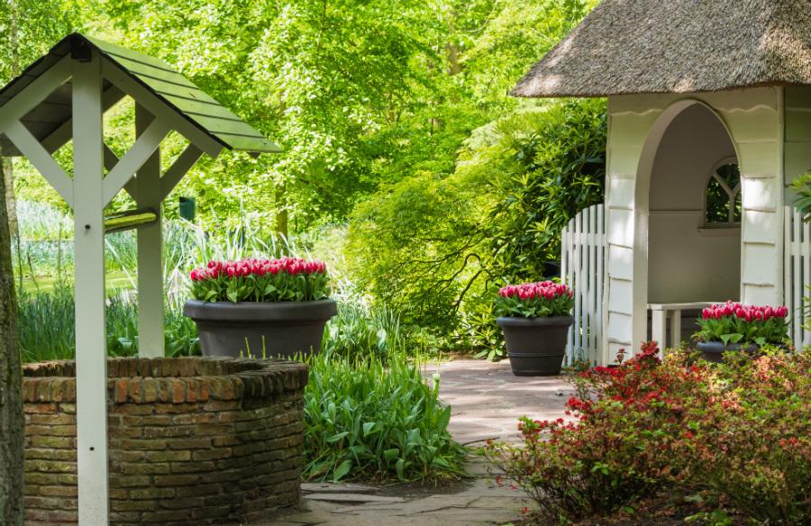 Grădina de la ţară