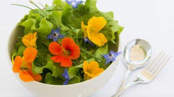 Reţete cu flori