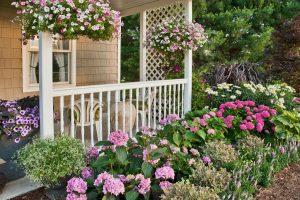 Grădina de iunie