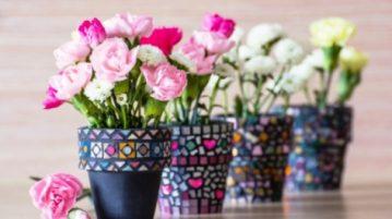 trandafiri in ghiveci, cele mai populare tipuri de trandafiri