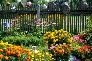 grădinăritul ecologic