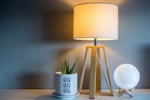lampa, bec, planta cu frunze verzi, lipsa luminii naturale