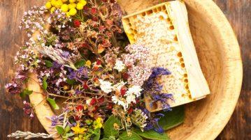plante care întăresc sistemul imunitar
