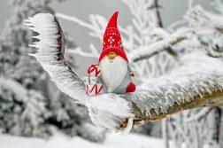Pitic cu tichie, Traditii de Sfantul Nicolae și Crăciun în lumea întreagă