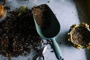 pamant gras, sol, proprietatile solului