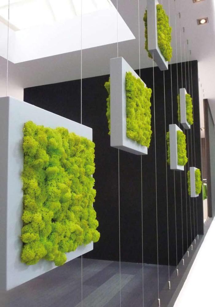Pereti cu plante