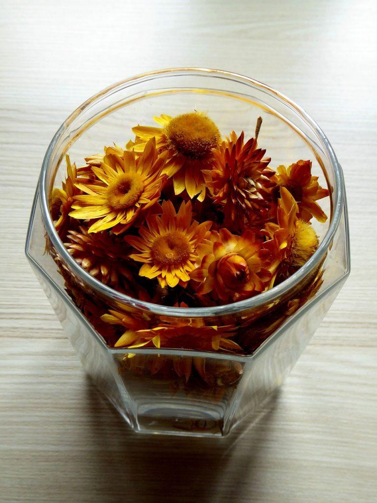 flori uscate (2)