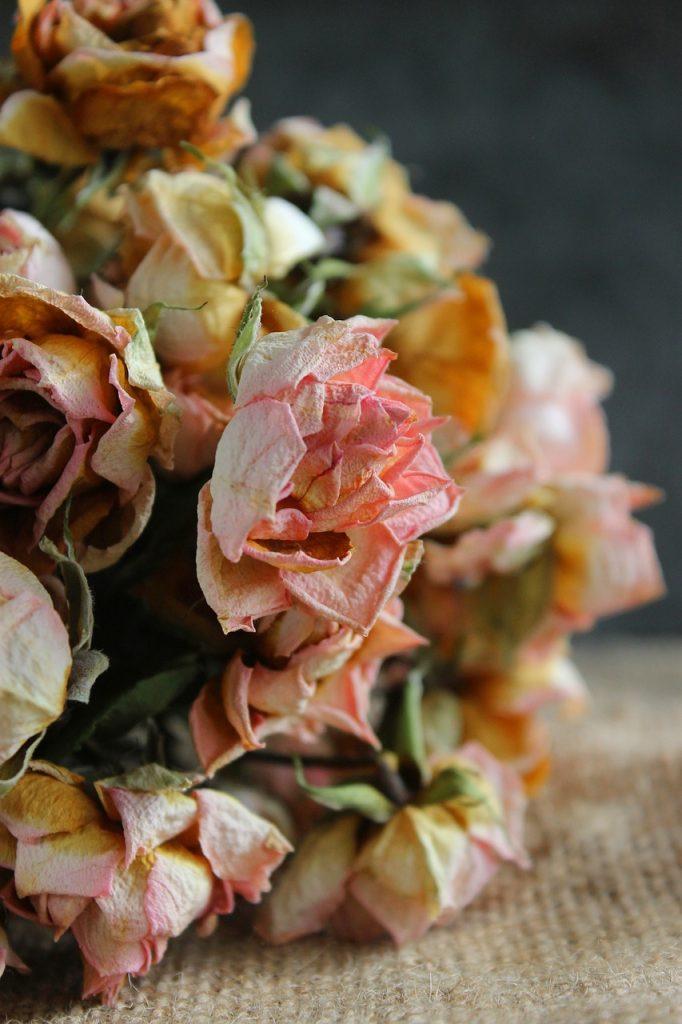 flori uscate (3)