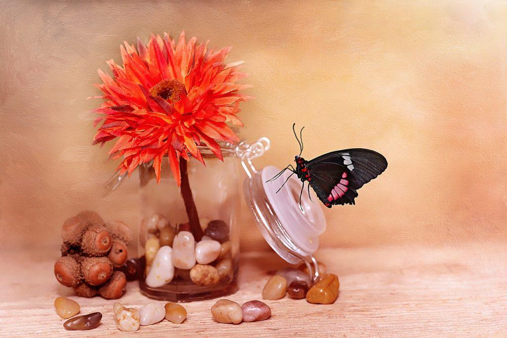 flower-689334_1280