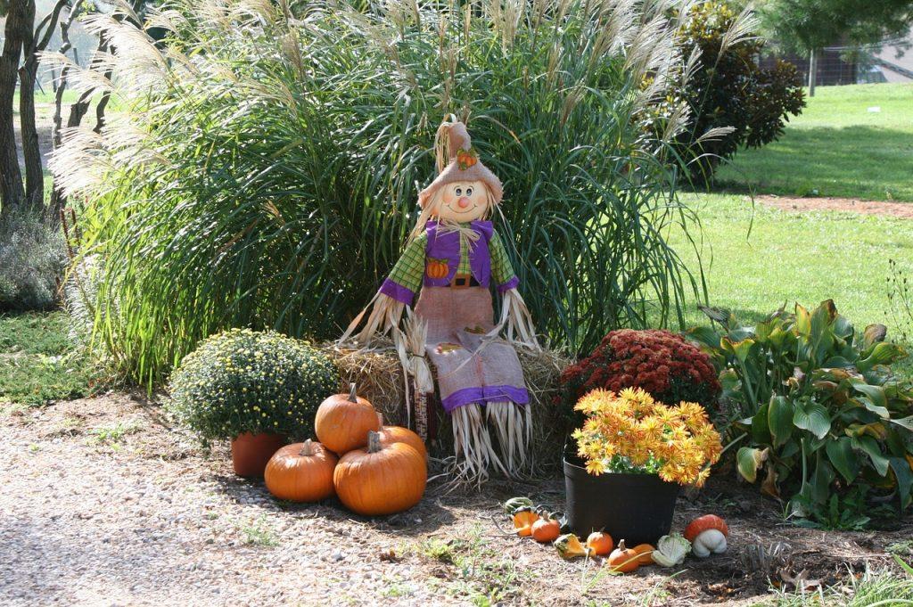 pumpkin-991825_1280