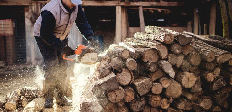 unelte taierea lemnului