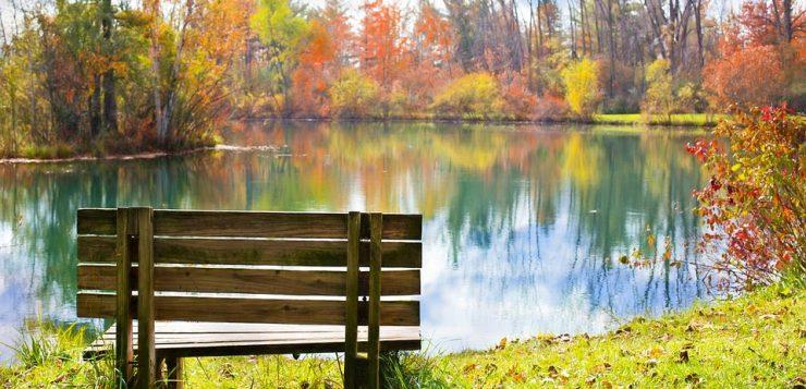 Banca langa lac