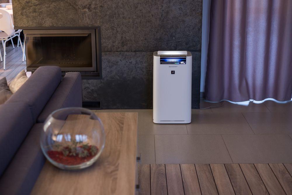 umiditatea în casă purificator de aer
