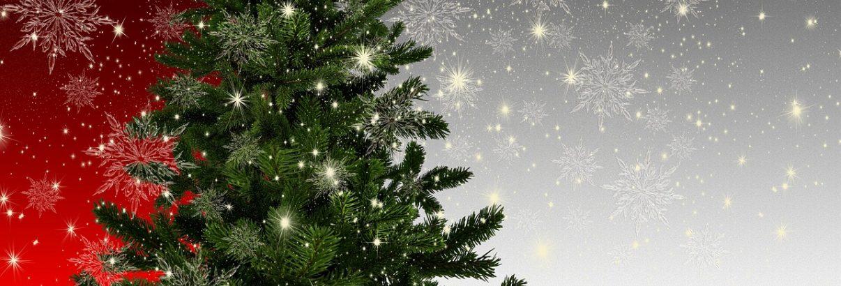 Cum alegi și păstrezi verdemai mult pomul de Crăciun