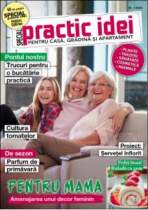 revista Practic