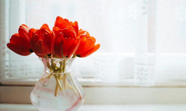 flori proaspete incasa in luna mai