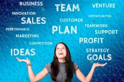 planul de afacere