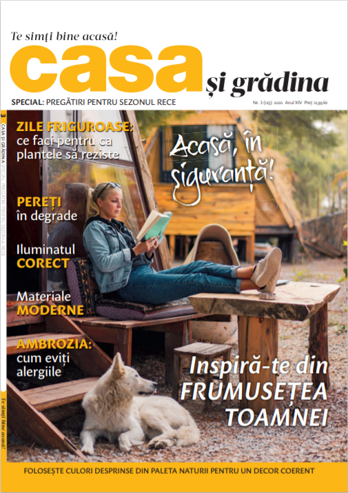 Casa si Gradina