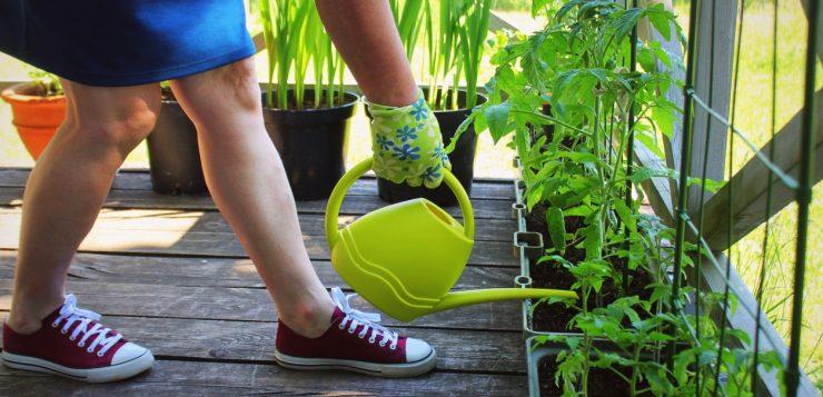 verdeturi jardiniera
