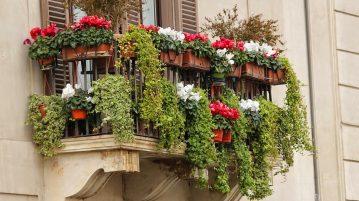 balcon modern