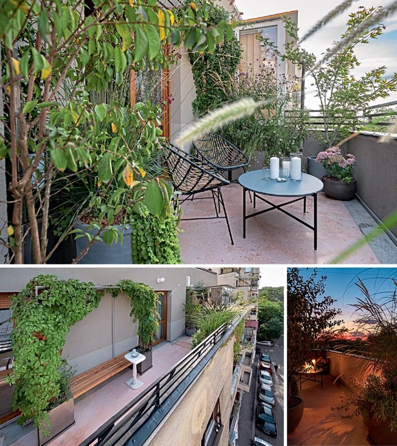 balcon apus
